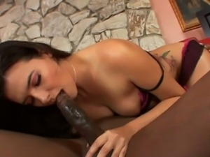 Danica dillon interracial fuck
