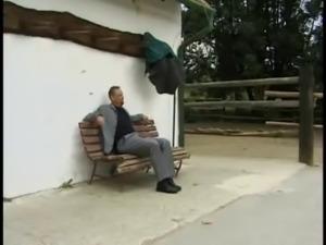 busty german milf sandra outdoor fuck