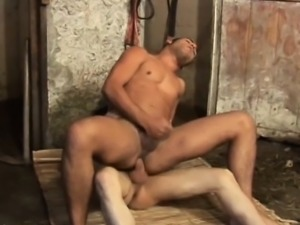 Latinos Barebacking Barn Fuck