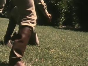 Gator 19