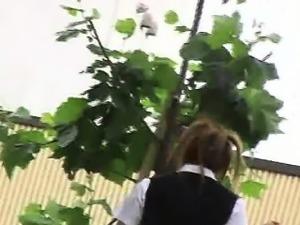 Shuri - S01-09 - Schoolgirls Fall Panties
