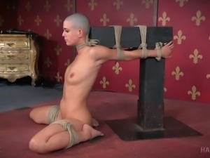 Bald wild slut Abigail Dupree gets tightly bound by horny BDSM master