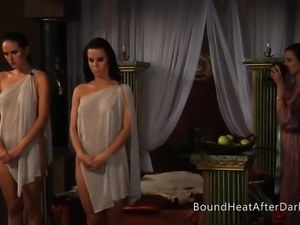 Lesbian Slave's Revenge: A Dream of Threesomes